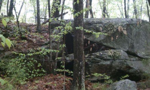 Rocks provide shelter for nest In Boylston NS by Dan Stimson