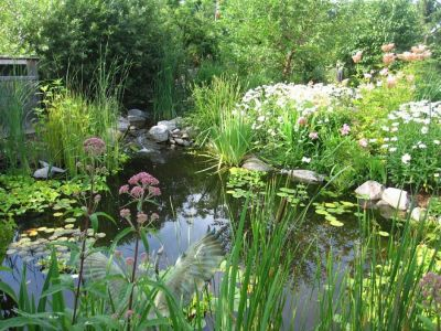 Green spaces with pond by Toronto Star
