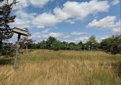 Bird houses on Prince Edward County by B. Yauheni