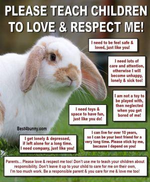 Bunnies As Pets
