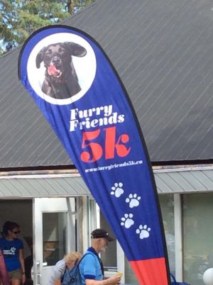 Furry Friends 5K JUne 10 2018 A Resounding Success (4)