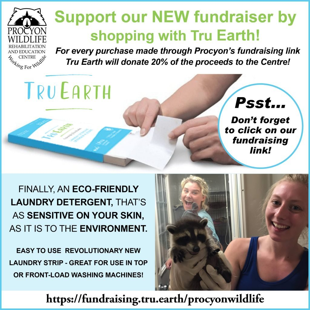 FINAL Tru Earth Fundraiser