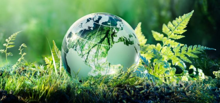 Celebrate Earth day on April 22nd!