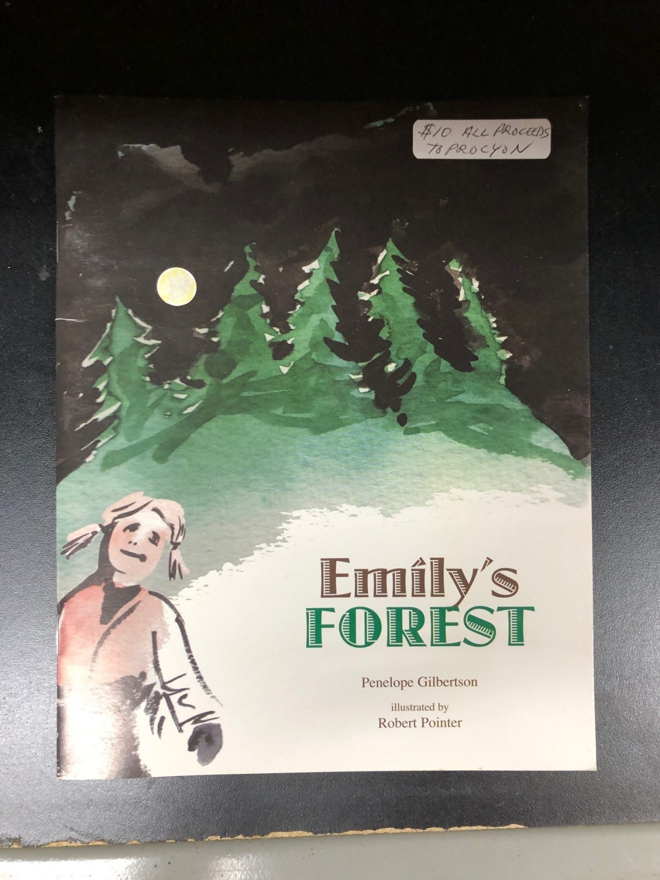 Emily's Forest by Penelope Gilbertson