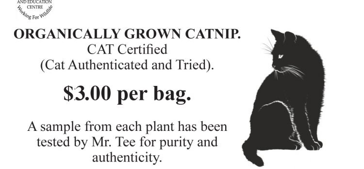 Mr. Tee's Famous Organic Catnip will be available at Bolton's Journey of Hope Vendors' Market!