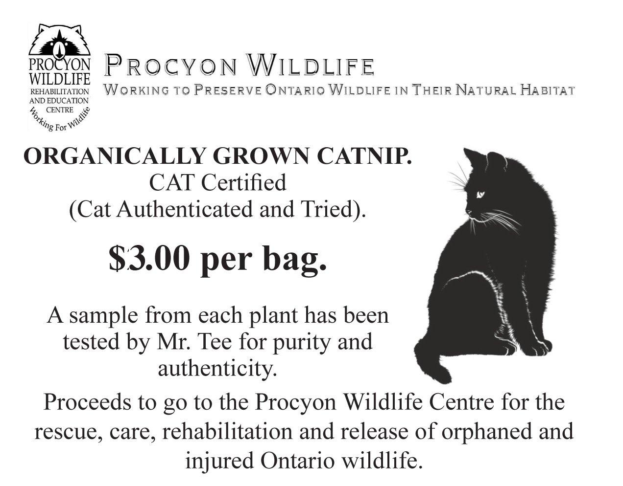 Mr. Tee's Organic Catnip